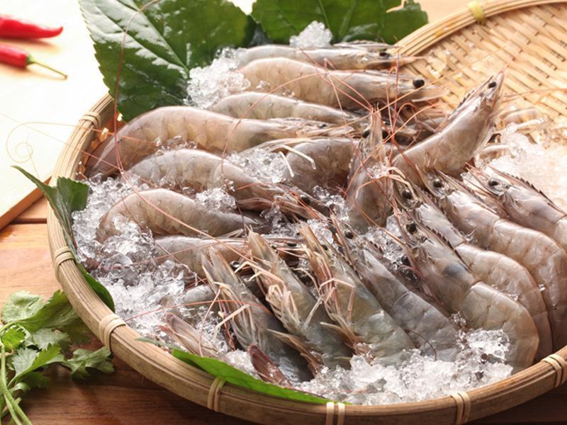 精選上等海鮮食材
