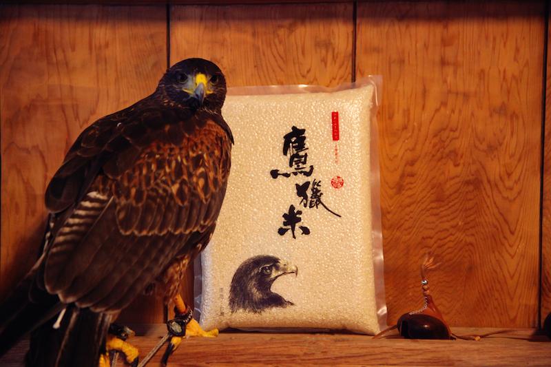 鷹獵米 白米一包