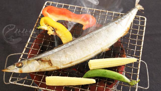 野生秋刀魚