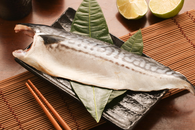 挪威特選鯖魚片