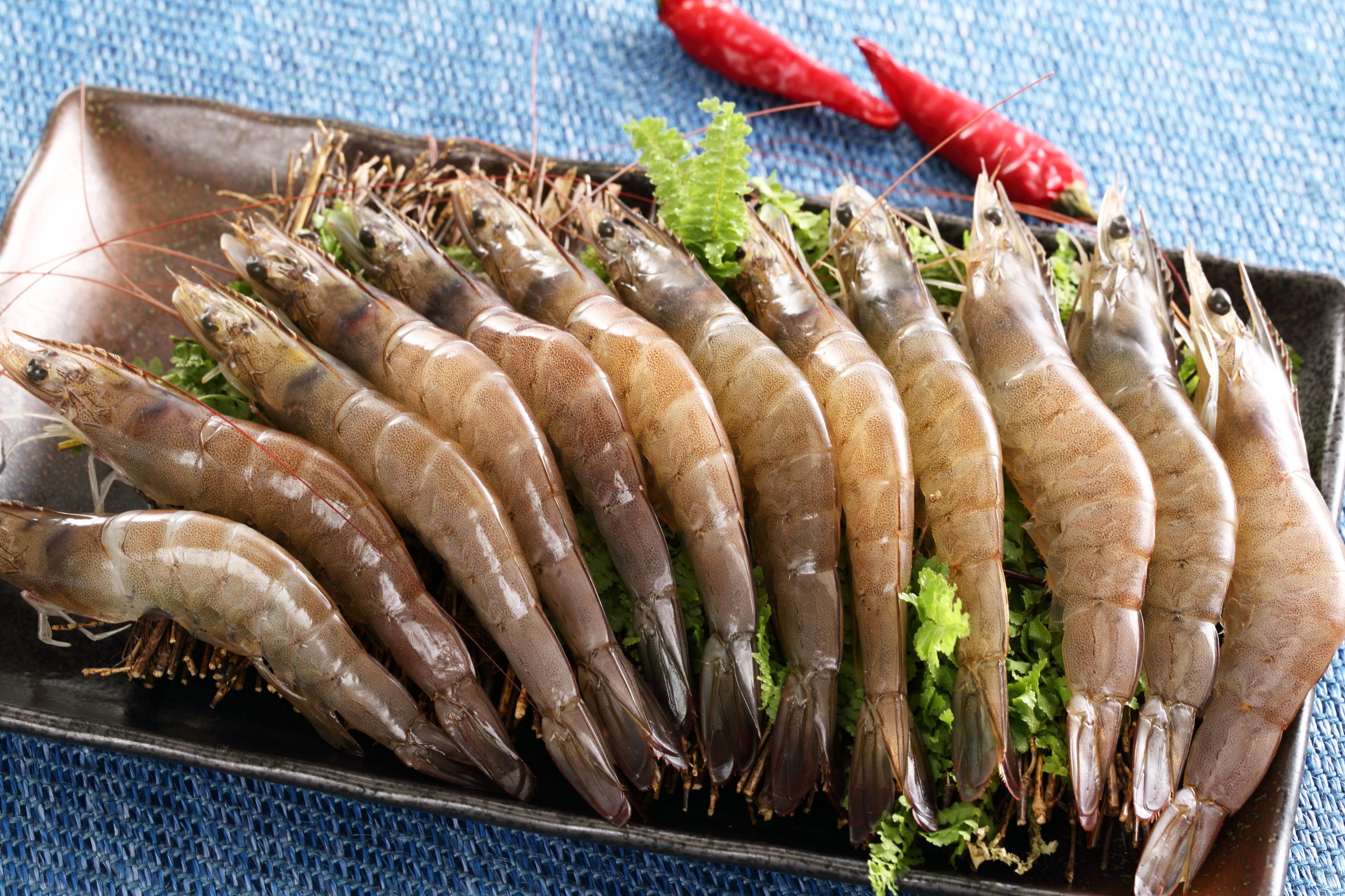 台灣海生白蝦(大)