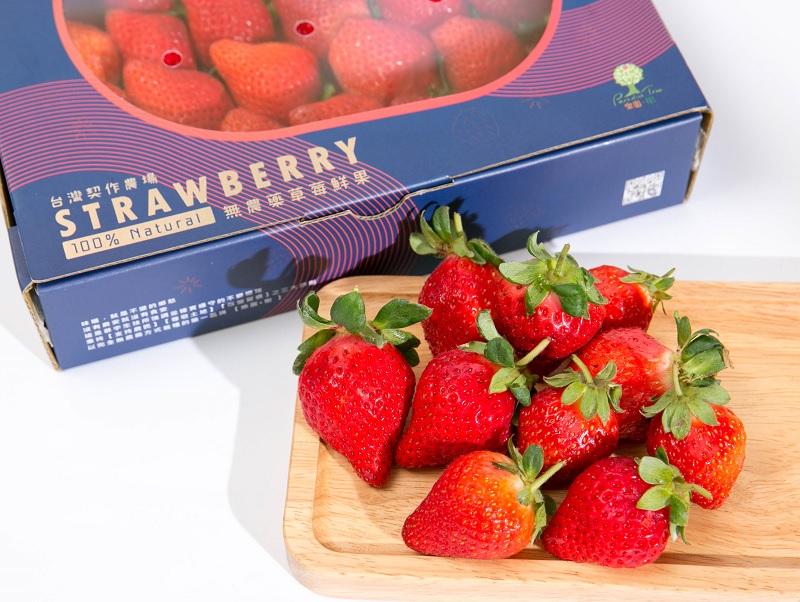無農藥草莓鮮果-1盒裝