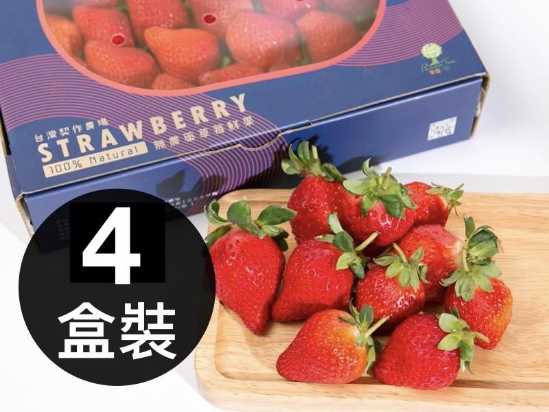 無農藥草莓鮮果-4盒裝